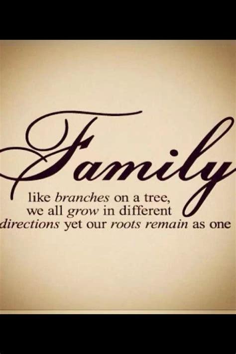 pinterest quotes  family quotesgram
