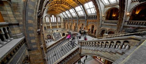 The 10 Best Museums In London  From Architecture To Quaggas