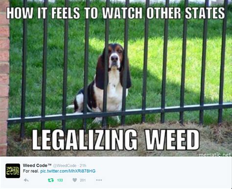 Legalize Weed Meme - how it feels watching other states legalize weed