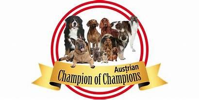 Austrian Champions Champion