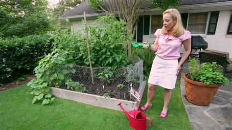 Southern Style Vegetable Gardening