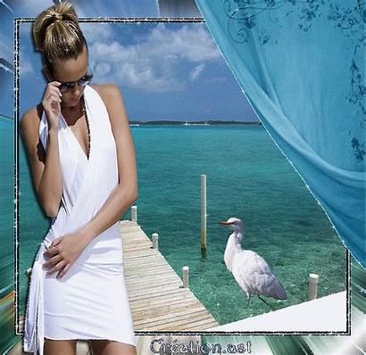 Beach Paradise Gifs