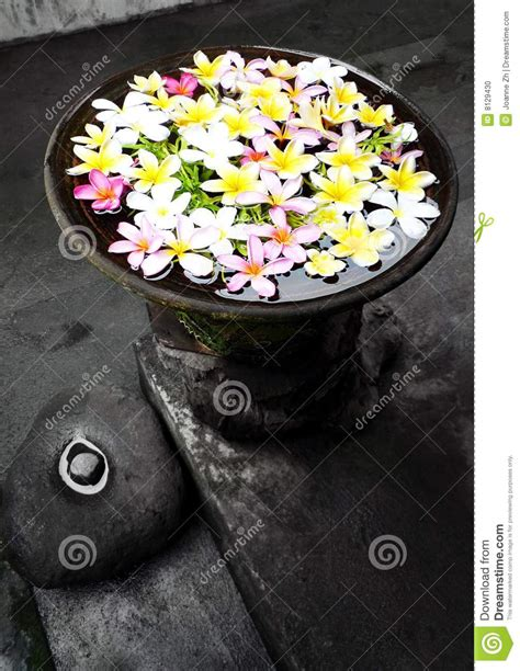 garden ornament  flowers bali stock photo image