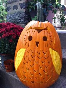 13, Carved, Pumpkins, For, The, Cutest, Halloween, Ever