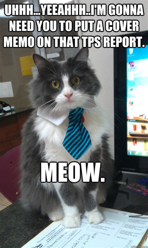 Annoying Cat Meme - uhhhyeeahhhim gonna need you to put a cover memo on th annoying boss cat