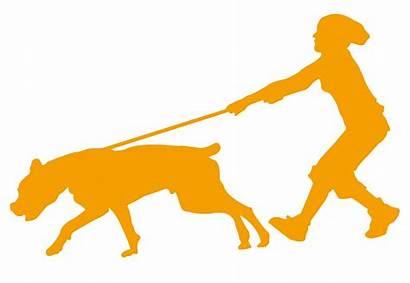 Silhouette Dog Walking Leash Walk Walker Clip