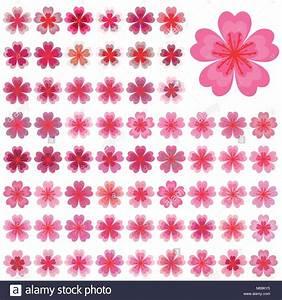 Sakura Baum Kaufen : isolierte bl ten von sakura cartoon rosa und wei en bl ten der japanischen kirschbaum vector ~ Frokenaadalensverden.com Haus und Dekorationen
