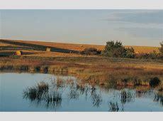 Prairie Pothole Region — Ducks Unlimited Canada