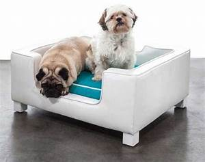 33 modern cat and dog beds creative pet furniture design With cat and dog furniture