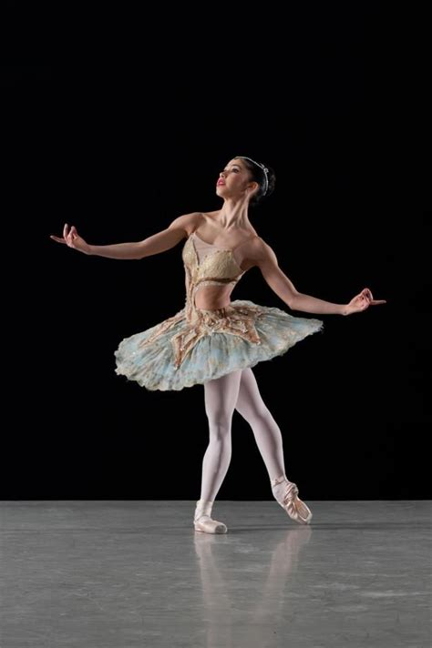 14971 professional photography of dancers 23 best images about ballet on ballet ballet