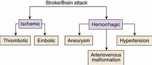 Care Of Critically Ill Patients With Neurologic Problems