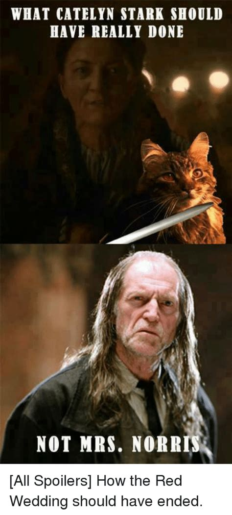 Red Wedding Memes - 25 best memes about catelyn stark red wedding and game of thrones catelyn stark red