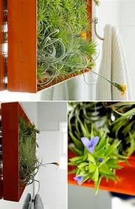 Tillandsien Im Glas : quadratisch holzrahmen terrarium designs mini garten garden ~ Eleganceandgraceweddings.com Haus und Dekorationen