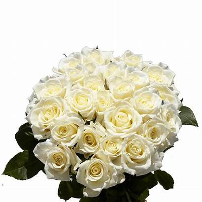 Roses Flower Mother Globalrose Bouquets Mothers Flowers