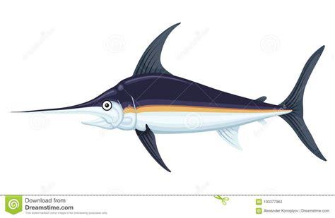 swordfish cartoons illustrations vector stock images