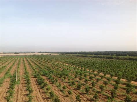 chambre d agriculture 35 exploitation agricole à vendre à agadir maroc vente