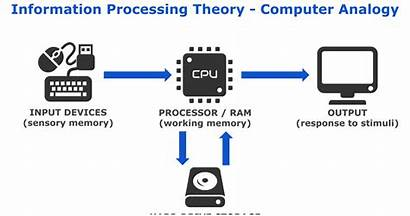 Processing Theory Learning