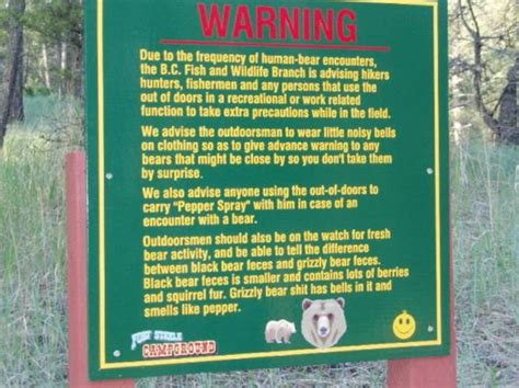 grizzly bear warning sign outdoor oddities