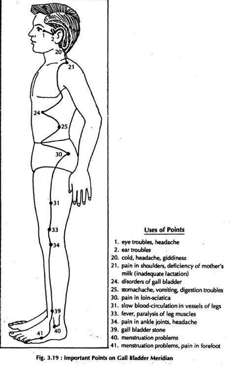 Gallbladder – Learn Self Healing Techniques Online