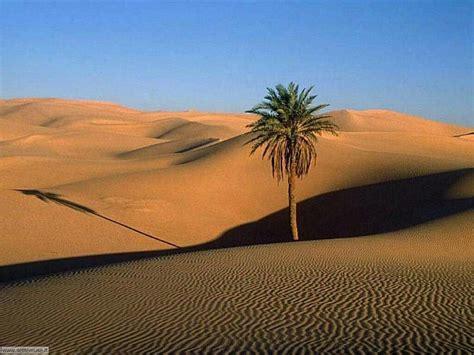 FOTO DESERTI E CANYON PER SFONDI DESKTOP   Settemuse.it