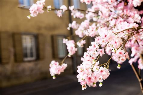 Orai: savaitgalį Lietuvoje - tikras pavasaris | 15min.lt