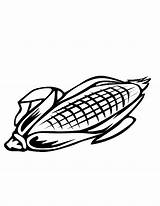 Corn Coloring Pages Sheet Kernel Colouring Comments Template sketch template