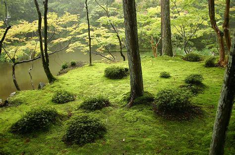 japanese garden wikipedia