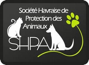 Spa Le Havre : spa du havre ~ Melissatoandfro.com Idées de Décoration