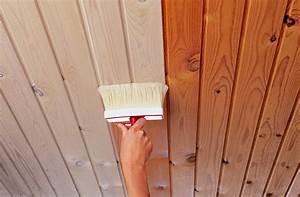 Holz Farbe Sprühen Statt Streichen : woca paneelwei extrawei 2 5 liter ~ Eleganceandgraceweddings.com Haus und Dekorationen