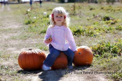 Colorado Springs Pumpkin Patch Black Forest pumpkin patch black forest colorado springs chinabackuper
