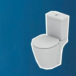 peinture wc les bonnes couleurs bleu gris cote maison With quelle couleur pour les toilettes