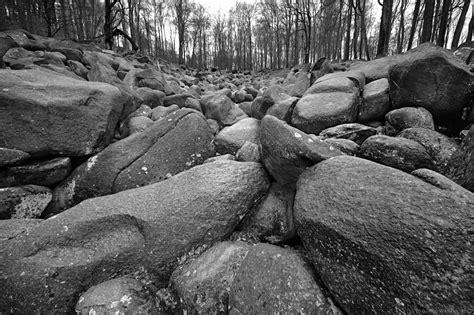 fuer eine handvoll steine forum fuer naturfotografen