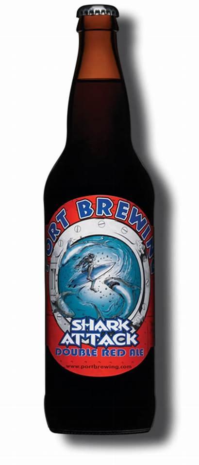 Shark Attack Port Beer Brewing Company Beers