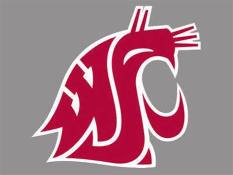 washington state cougars wallpaper gallery