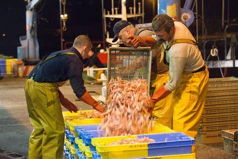 le comptoir de la mer lorient lorient keroman premier de p 234 fran 231 ais