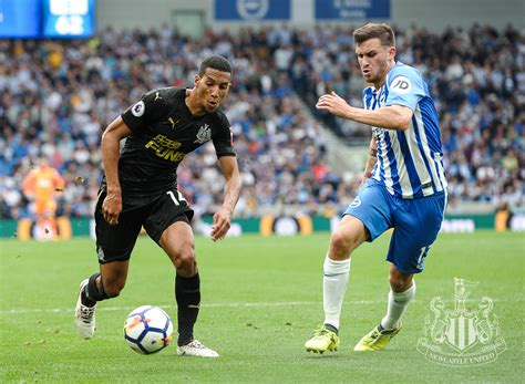 Newcastle United - Brighton game in pictures