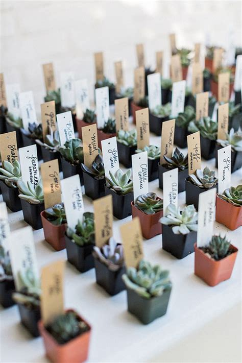 wedding supplies and decorations historic cree estate wedding succulent favors flora and 1164