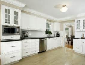kitchen crown moulding ideas paragon kitchens transitional kitchen toronto by paragon kitchens