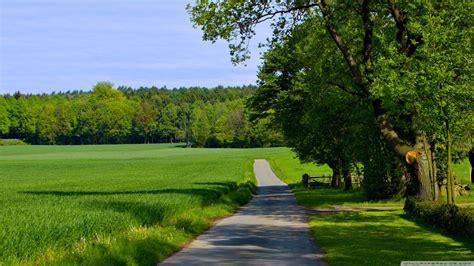 summer landscape nature  hd desktop wallpaper