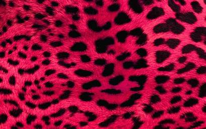 Leopard Pink Animal Laptop Desktop Iphone Girly