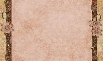 Background Backgrounds Pink Daisy Antique Brown Wallpapers