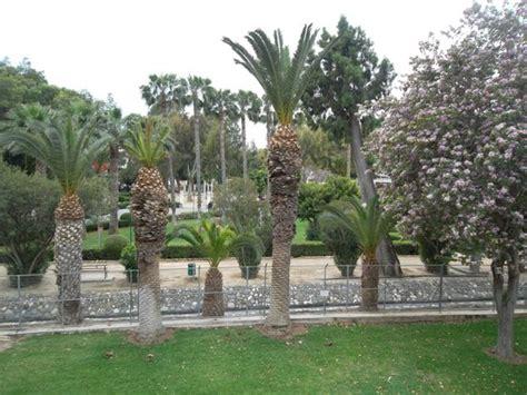 Municipal Gardens by Municipal Gardens Picture Of Limassol Municipal Gardens