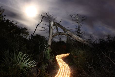 Light Painting By Jason D. Page