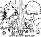 Maple Syrup Printable Coloring Drawing Tree Pages Natural Drawings Canadian Countryside Bucket Canada Colouring Tap Clipart Getdrawings Sheets Bottle Worksheet sketch template