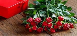Schnittblumen Länger Frisch : schnittblumen 5 tipps um den blumenstrau l nger frisch zu halten ~ Watch28wear.com Haus und Dekorationen