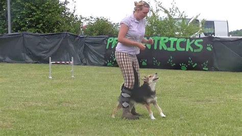 Dogdance Klasse 2