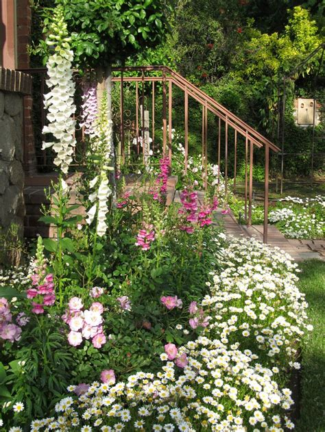 Foxglove, Snapdragon, Roses And Daisies Gardens