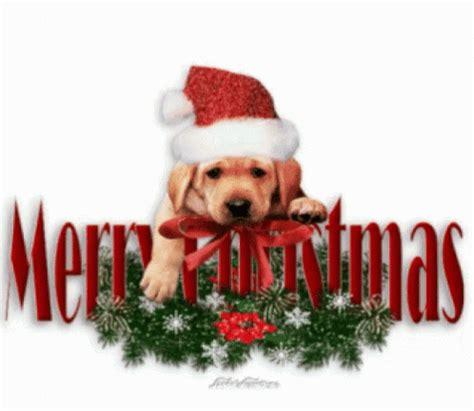 merry christmas gif merry christmas discover share gifs