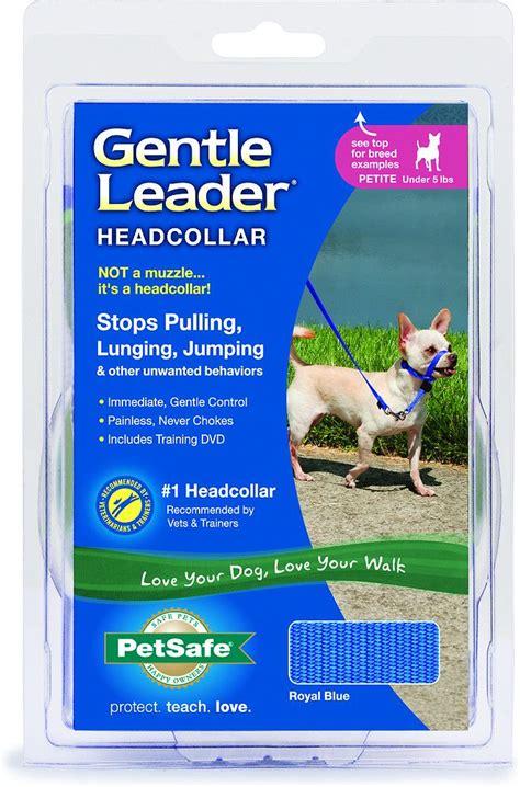 petsafe premier gentle leader quick release royal blue dog