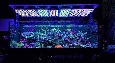 Led Lights For Reef Tank by Amazing Japanese Reef Tank Atlantik V4 Led Lighting